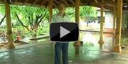 Madhavbaug Patient Testimonial: 5